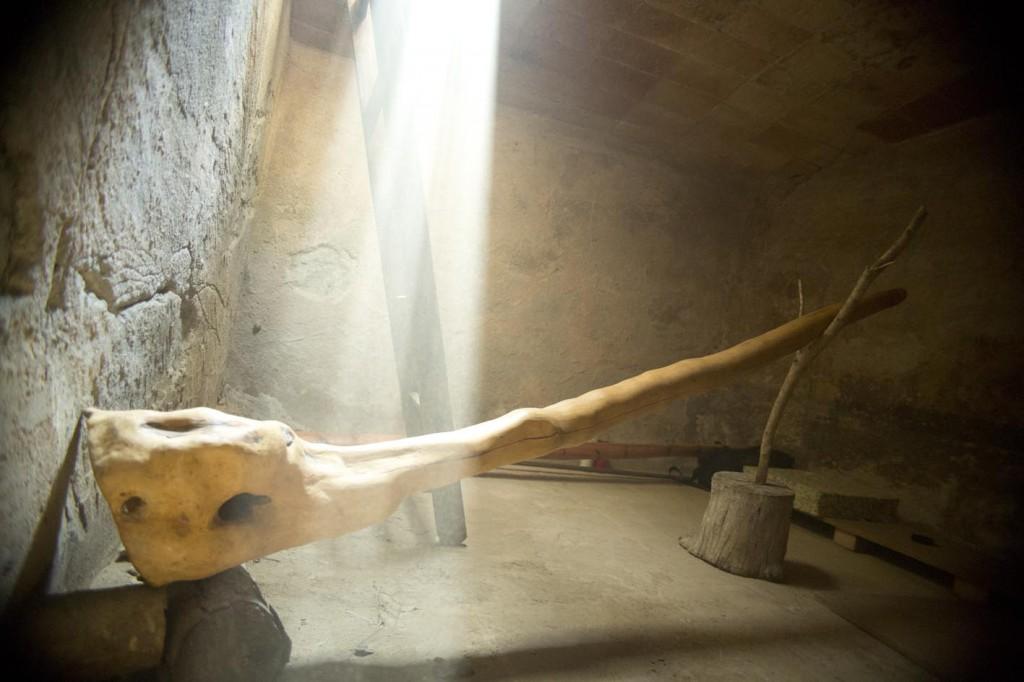 joel didgeridoo LU cova