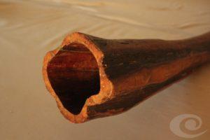 Arbutus Unedo Didgeridoo yrdaki